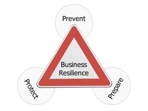 Business Resilience